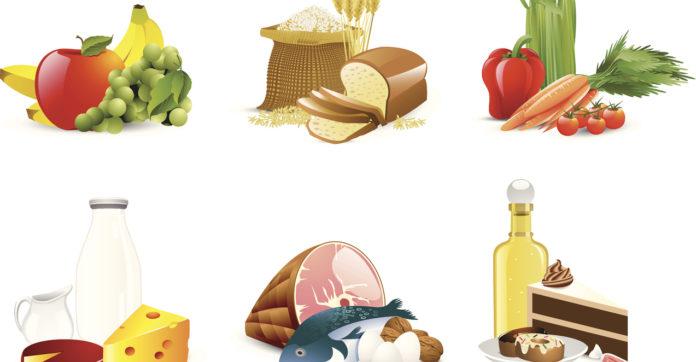 états généraux de l'alimentation