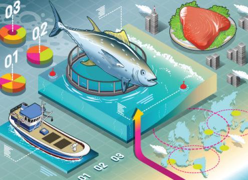 États généraux de l'alimentation : où sont passés la pêche et l'aquaculture ?
