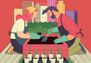 L'agriculture urbaine : un outil au service de la résilience des villes